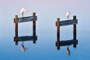 Piers, Trestles, and Bridges